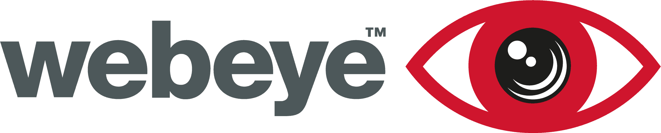 webeye logo
